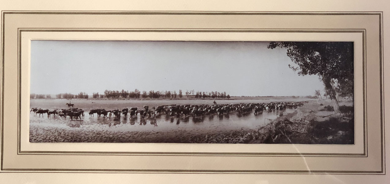 Throwing The Herd On Water. Matted & Framed Original Photograph. by L.A. Huffman