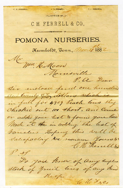 C. H. Ferrell & Co., Proprietors Of Pomona Nurseries, Humboldt, Tennessee, Hand-Written Letter Dated Nov 21st, 1882, On Company Stationery by Humboldt, Tennessee C. H. Ferrell & Co.