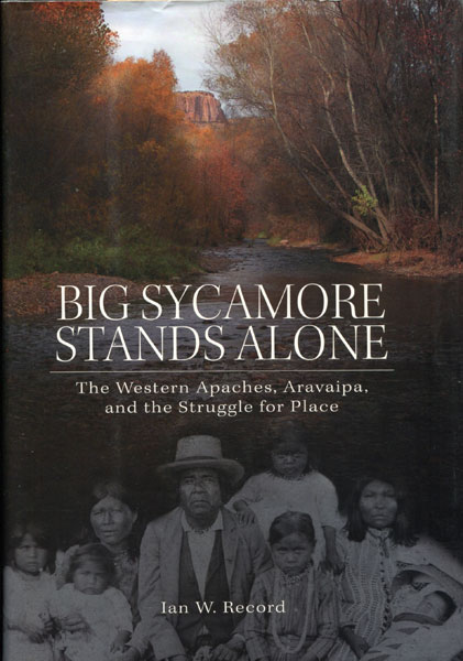 Big Sycamore Stands Alone. The Western Apaches, Aravaipa, And The Struggle For Place by  Ian W. Record