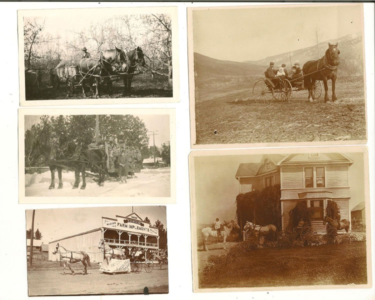 Collection Of Eleven Photographs In British Columbia, Ca. 1900 Anonymous