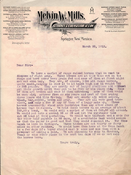 1913 Typed Letter To Sell A Carlot Of Range Raised Horses  Melvin W.  Mills [Attorney & Counsellor At Law]