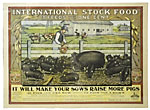 "International Stock Food ""3 ..."